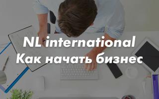 NL international – как начать бизнес